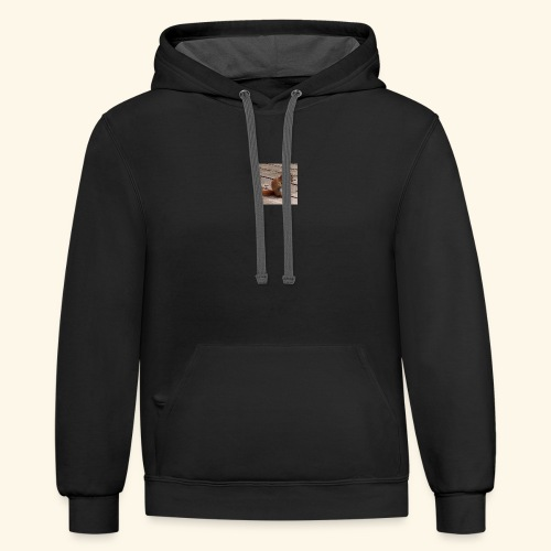Red Squirrel - Contrast Hoodie