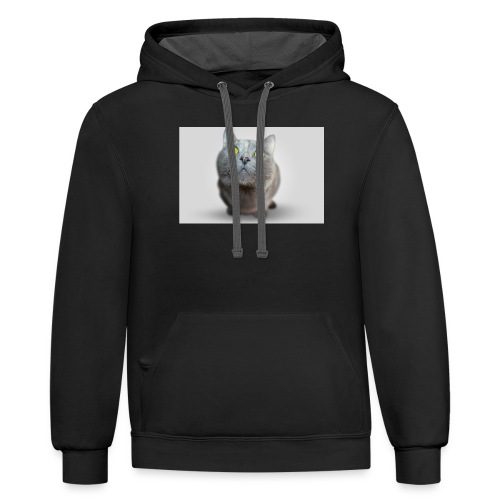 funny cat T-shirt - Contrast Hoodie