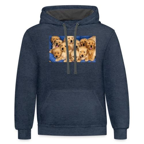 a-leesia merchandise - Contrast Hoodie