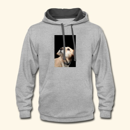 A dog with a bright future - Contrast Hoodie