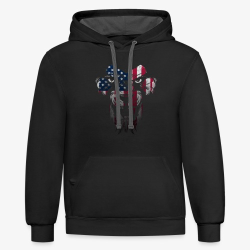 American Flag Lion Shirt - Contrast Hoodie