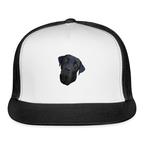 bently - Trucker Cap