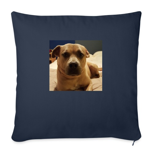 """Linus1 - Throw Pillow Cover 18"""" x 18"""""""