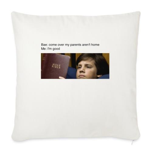 "5b97e26e4ac2d049b9e8a81dd5f33651 - Throw Pillow Cover 18"" x 18"""