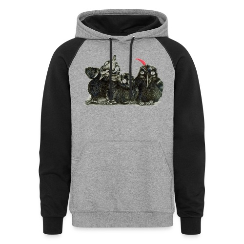 Three Young Crows - Colorblock Hoodie