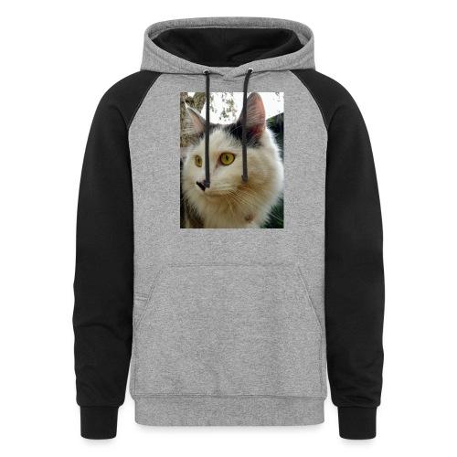 Cute cat - Unisex Colorblock Hoodie