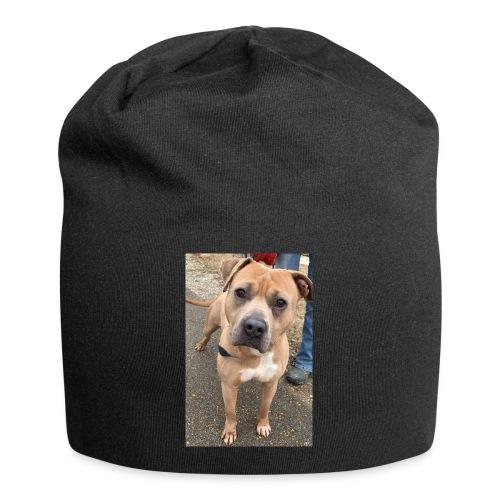 Brute Pup - Jersey Beanie