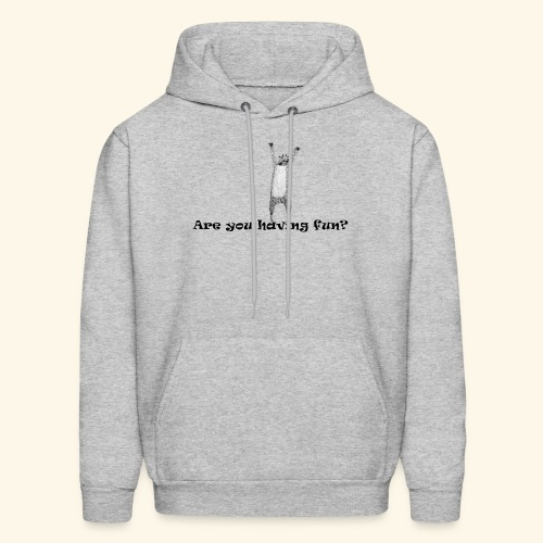 Are you having Fun? - Men's Hoodie