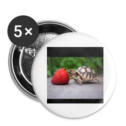 Basher the Turtle - Buttons large 2.2'' (5-pack)