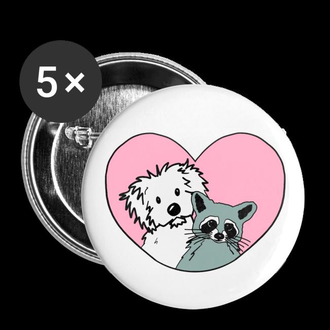 Raccoon And Dog