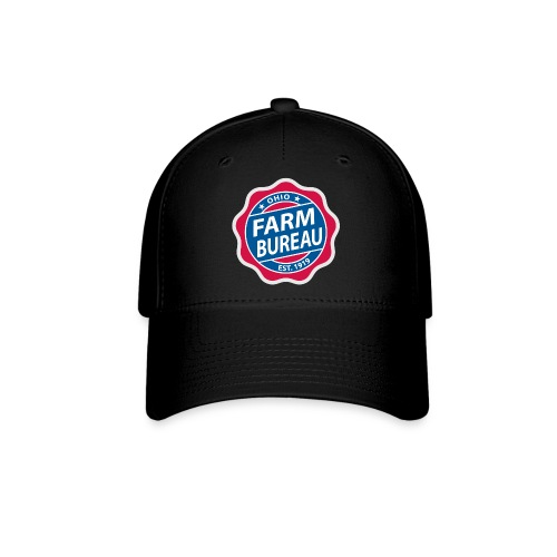 Color Logo - Baseball Cap
