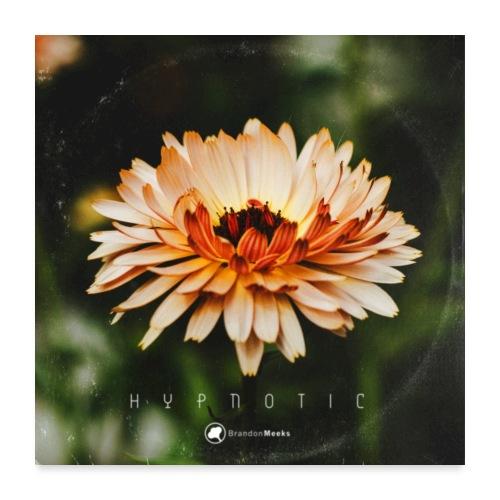 Hypnotic Album Cover Art - Poster 24x24