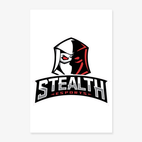 stealth banner - Poster 8x12