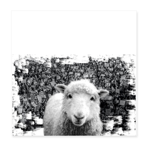 Don't You Follow These Sheeple! - Poster 8x8
