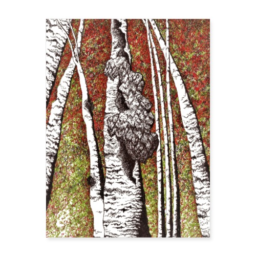 Bear's Head on Birch - Poster 18x24