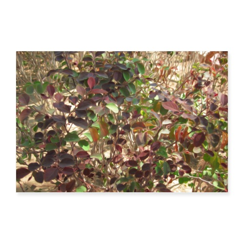 Beautiful Leaves - Poster 36x24