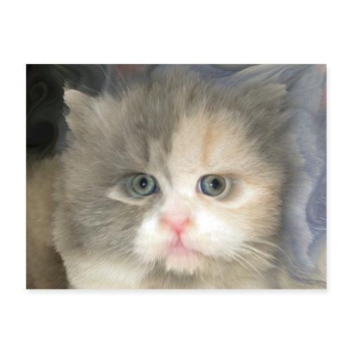 My Cat - Poster 24x18