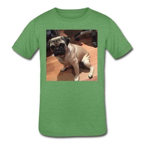 Gizmo Fat - Kids' Tri-Blend T-Shirt