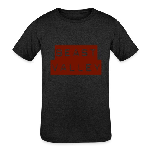 IMG 1113 - Kids' Tri-Blend T-Shirt