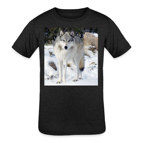 Canis lupus occidentalis - Kids' Tri-Blend T-Shirt
