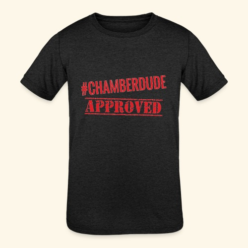 Chamber Dude Approved - Kids' Tri-Blend T-Shirt