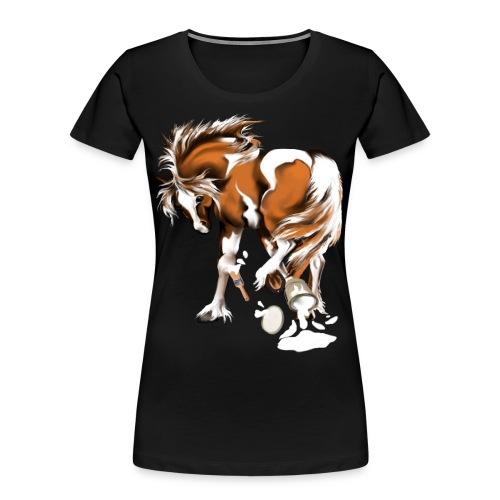 Paints and Paints.... - Women's Premium Organic T-Shirt
