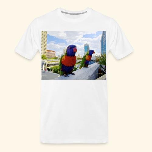 bird of color - Men's Premium Organic T-Shirt