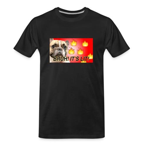 IMG 1465 - Men's Premium Organic T-Shirt