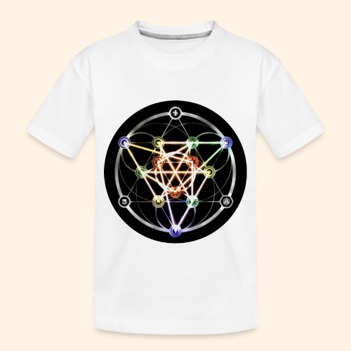 Classic Alchemical Cycle - Toddler Premium Organic T-Shirt