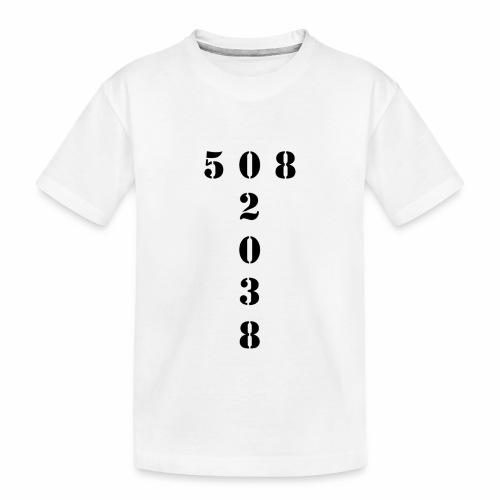 508 02038 franklin area/zip code - Toddler Premium Organic T-Shirt