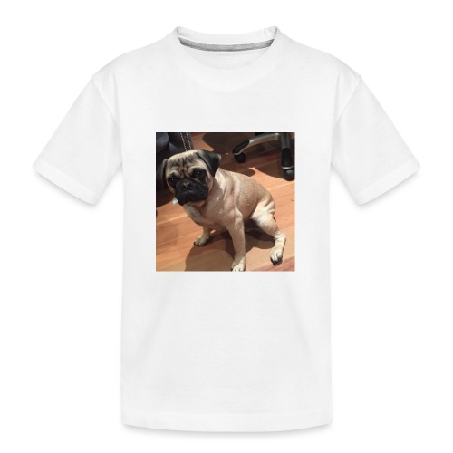 Gizmo Fat - Kid's Premium Organic T-Shirt