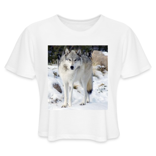 Canis lupus occidentalis - Women's Cropped T-Shirt