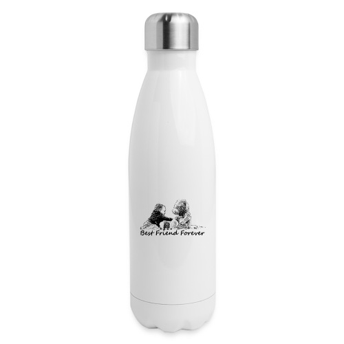Best Friend Forever (boy) - Insulated Stainless Steel Water Bottle