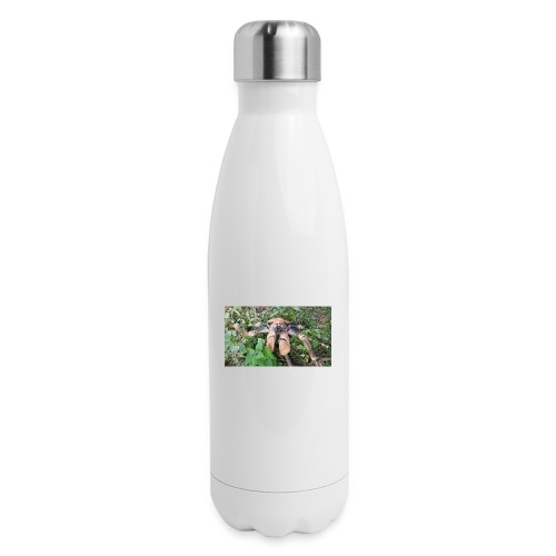 Robber Crab - Insulated Stainless Steel Water Bottle