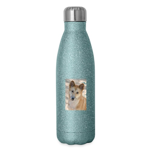 My youtube page - Insulated Stainless Steel Water Bottle