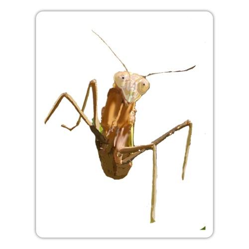 praying mantis - Sticker