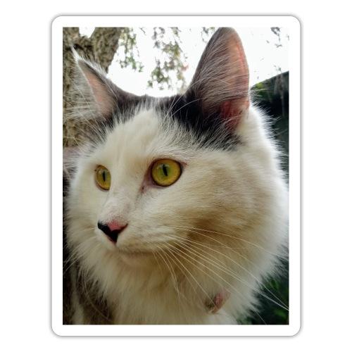 Cute cat - Sticker