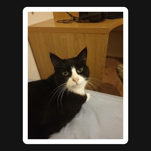 Gamer Cat 1 - Sticker
