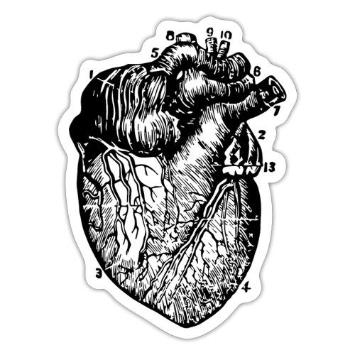 Big Heart - Vintage Medical Illustration - Sticker