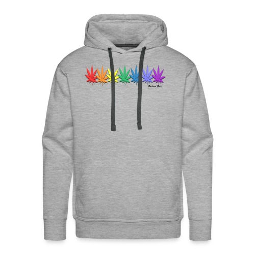 rainbow leaves - Men's Premium Hoodie