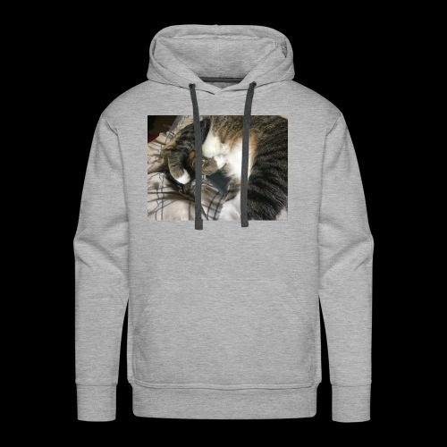 Cute cat - Men's Premium Hoodie