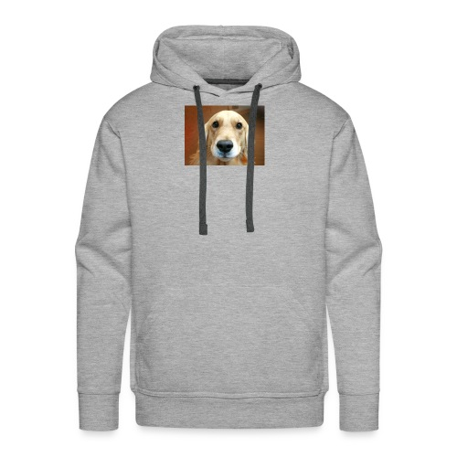 Snapshot 20180127 - Men's Premium Hoodie