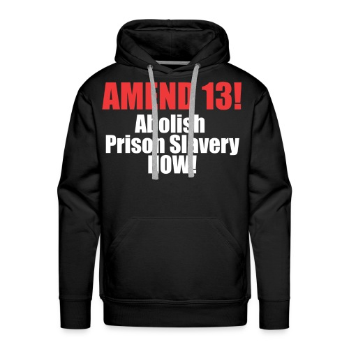 Amend 13 Fitted T-shirt - Men's Premium Hoodie