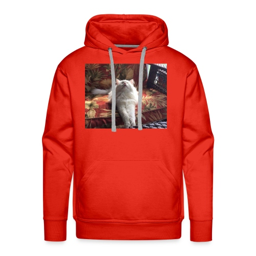 minion cat - Men's Premium Hoodie