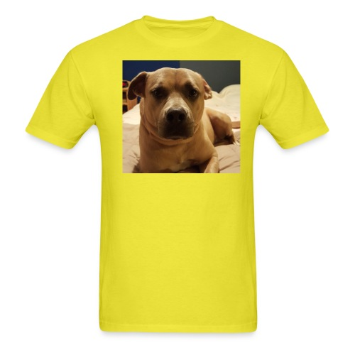 Linus1 - Men's T-Shirt