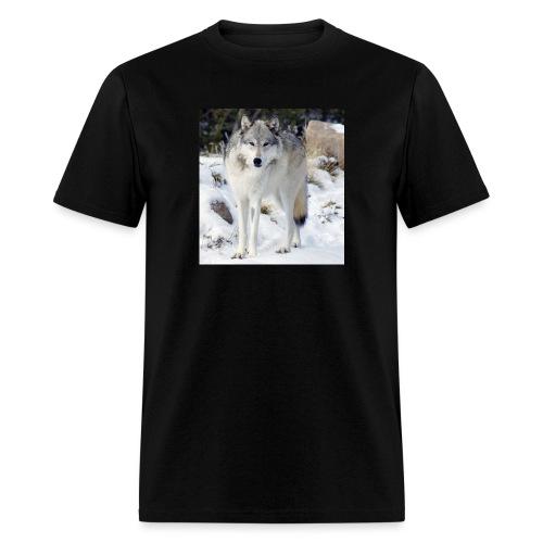 Canis lupus occidentalis - Men's T-Shirt