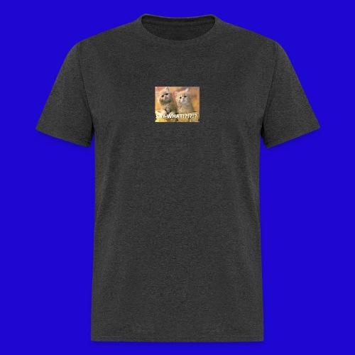 Cute Cats - Men's T-Shirt