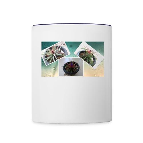 Air plant - Contrast Coffee Mug