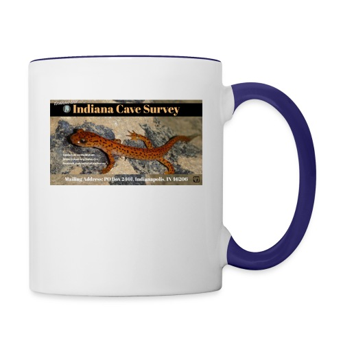 ICS Business Card General - Contrast Coffee Mug
