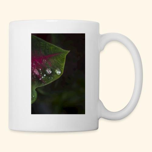 H20 - Coffee/Tea Mug